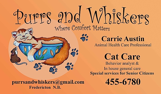 cat purrs and whiskers may 17 final