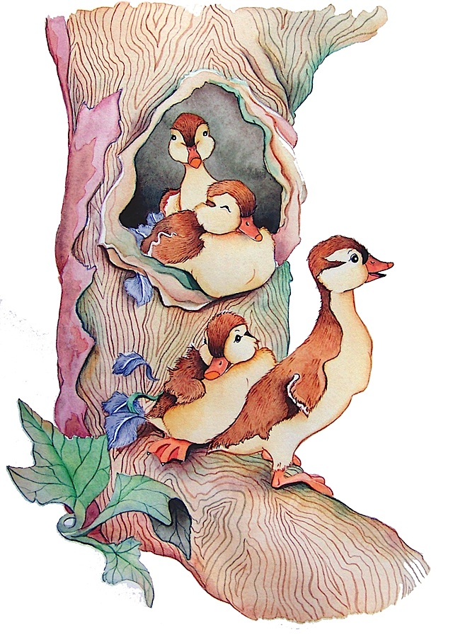 ducks in a row tree final colored 1