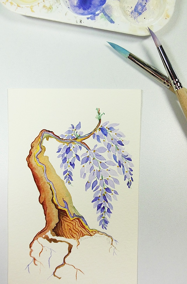 wisterai tiny art color photo